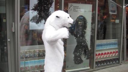 Полярна мечка атакува. Смях.
