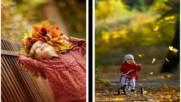 Есента си отива авторски