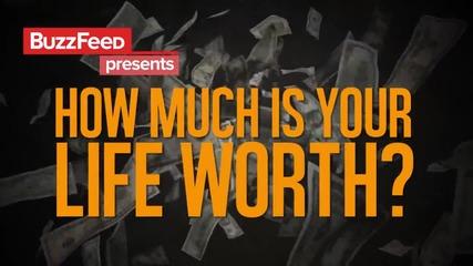 Колко струва животът ви