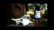 The Texas Vibrator Massacre ( Trailer )