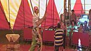 цирк орион