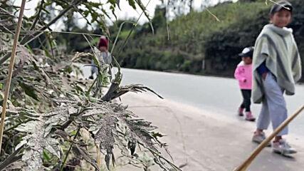 Ecuador: Ash from Sangay volcano blankets crops in Cebadas
