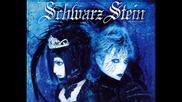 Schwarz Stein - Beautiful The Virgin