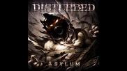 Disturbed - The Animal (превод)