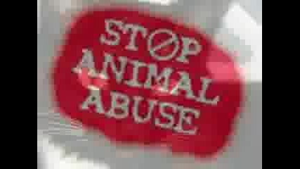 Да Спасим Животните