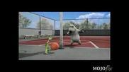 Лудата Мечка - Баскетболист