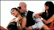 i know you want me pitbull hd
