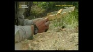 Naked sciense - Surviving ancient alaska 1