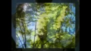 Scorpions - Dust in the wind ( Авторски и Превод )