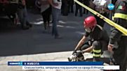 СЛЕД ТРУСА В ИТАЛИЯ: Спасиха котка, затрупана под руините
