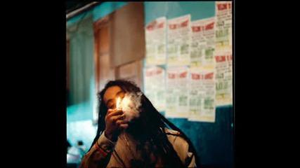 Damian Marley - Inner Circle