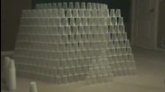 600 Cups One Guy