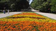 Варна - Морската Градина / Varna - Sea Garden 010