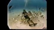 Подводен Подарък на Водолаза - смях