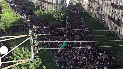 Algeria: Mass protests oppose presidential elections