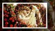 ... Градината на розите ...