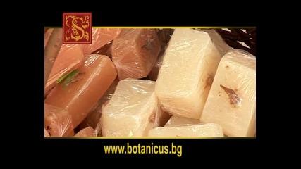 Botanicus Bulgaria 3