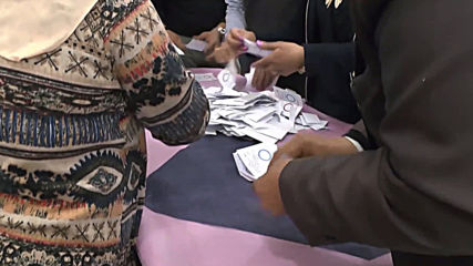 Egypt: Votes tallied after three-day referendum on constitutional changes