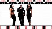 Pitbull - I Know You Want Me - Bg Subs