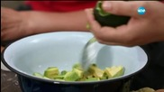 Салата от краставици, авокадо и сирене - Бон Апети (07.08.2015)