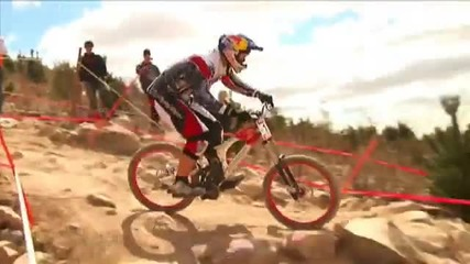 Canberra Downhill Mountin Bike World Cup!