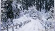 Winter breath