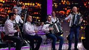 Jasmin Muharemovic - Mace moje lazljivo ( Live ) - Tv Grand 13.10.2016.