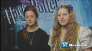 Ginny Weasley & Lavender Brown - Harry Potter Love Interests - Who will Harry Marry