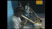 Hang Drum And Didgeridoo