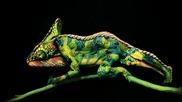 Хамелеон, бодипейнт от две женски тела ,превръща ги в красота!