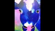Skakavci-plava krava