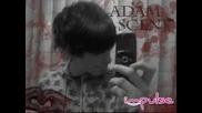 My Best Friend Adam Bleeding Star