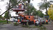 Germany: Fire department remove fallen trees in Leipzig as Storm Ignatz sweeps region