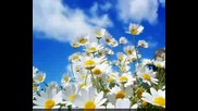 Richard Clayderman - Romance De Amor