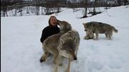 Анита се връща при вълците !