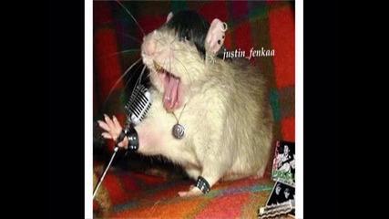 Мишки-гамми 100% Смях