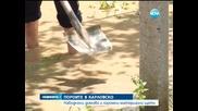 Наводнение засегна десетки къщи в Карловско - Новините на Нова