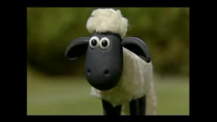 Shaun The Sheep - Timmy In A Tizzy