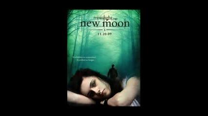 Bella Swan In The New Moon