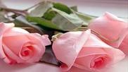 Roses Love Sunshine ~~nana Mouskouri