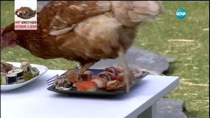 Суши за кокошки
