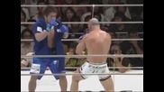 Mma Brutality Best Knockouts Ever