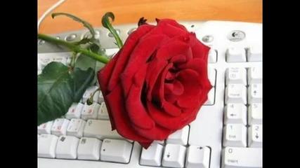 Виртуалната любов
