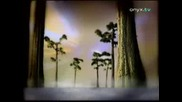 Eros Ramazzotti - L`Aurora