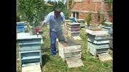 Паметникът на Шипка в пчелина на Кольо Карапеев