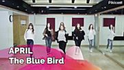 Guess The Song By Choreography 7 Kpop random Game