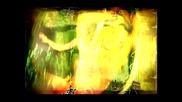 Камелия - Залеза и Зората [ D V D ]