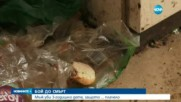 3-годишно момиченце пребито до смърт във Видинско