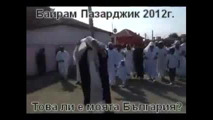 Цигани талибани в Пазарджик!? Това ли е нашата България?