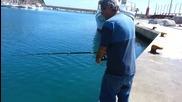 риболов на морски кефал